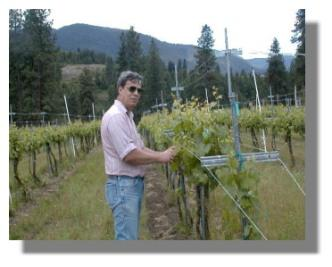 Larry Giannou gathers vines for microscope pictures.