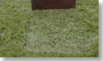 Objects can lay on the lawn for days and the turf won't yellow up on a BioVam treated lawn.