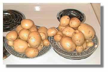 Yukon Gold Potatoes.